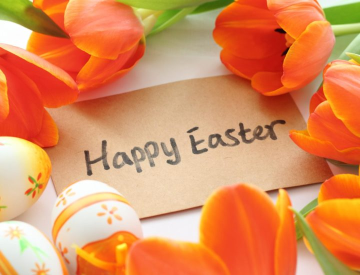 happy-easter-greetings-wallpaper-background